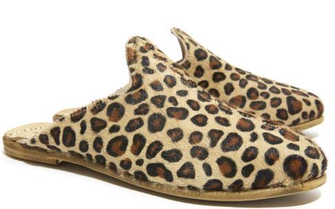 Sabah leopard